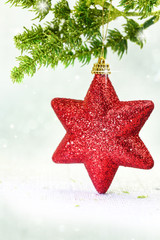 Christmas ornament red star on tree branch