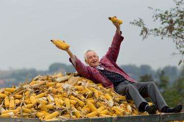 Senior man on corn pile