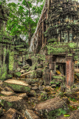 Ancient ruins and tree roots, Ta Prohm temple, Angkor, Cambodia