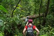 Hiking in deep jungle