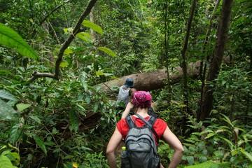 Hiking in deep jungle