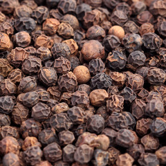 Extreme close-up of black peppercorns