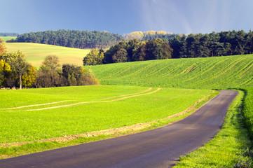 Polna droga wiodąca przez pola