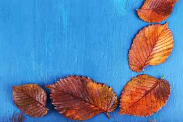 Leaves arranged as frame on wooden background