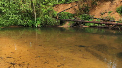 Shoal River