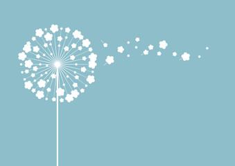 Pusteblume auf blauem Hintergrund