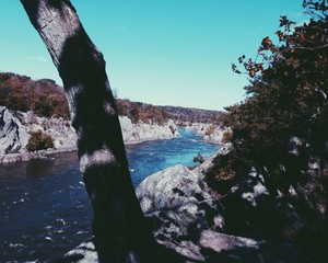 The Blue Potomac River