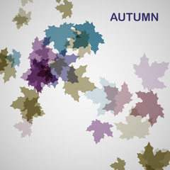 Autumn seasonal background