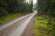 Green environment with a winding gravel road