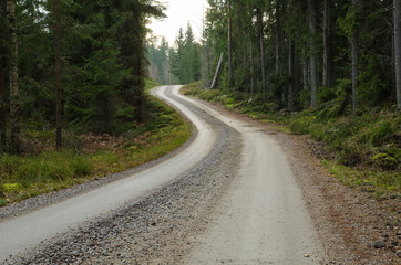 Winding gravel road