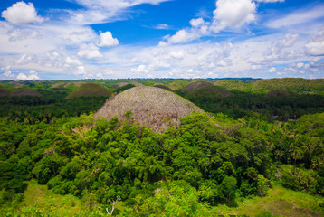 Green juicy and colorful Chocolate Hills in Bohol, Philippines