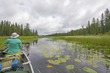 Canoeing Through Lily Pads on a Cloudy Day on a Quiet North Wood