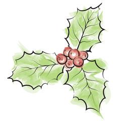 Holly watercolor