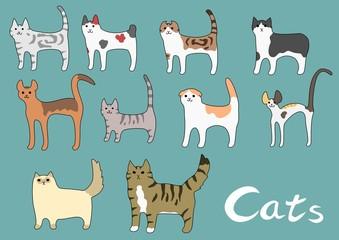 猫の種類いろいろ