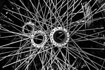 Bicycle spoke detail