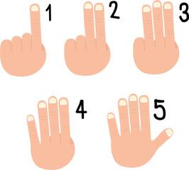 illustrator of hand signs