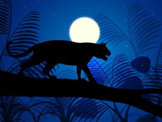 Tiger On Tree Indicates Wild Animals And Beast