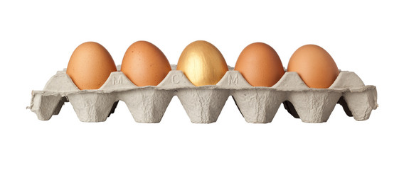 One golden egg in the middle of a tray of eggs isolated