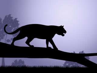 Tiger On Tree Indicates Wild Animals And Predator