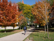 canvas print picture - University campus in fall