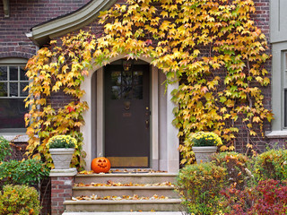 front door with colorful ivy in fall
