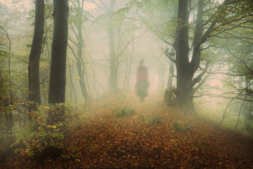 Dark mist in the forest. Ghost appears