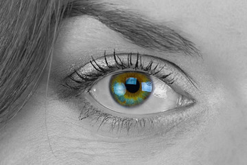 Black and white photo of woman's green eye