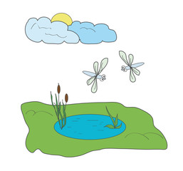 Dragonflies and pond