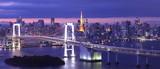 Fototapety view of Tokyo Bay , Rainbow bridge and Tokyo Tower landmark