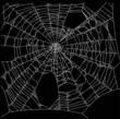 square old white spider web illustration - 72755401