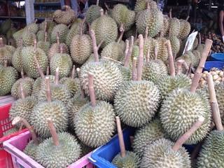 durian fruit thai