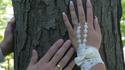 newlyweds hands caress each other