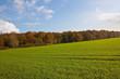 canvas print picture - Agrarlandschaft im Herbst