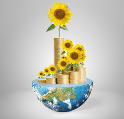 Flowers growing from a money,Some components of this image are p