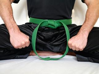 Kampfsport Gürtel grün dynamisch