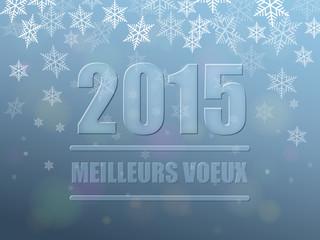"""Carte """"MEILLEURS VOEUX 2015"""" (bonne année joyeuses fêtes)"""