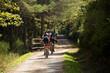 carrera ciclista a traves del bosque