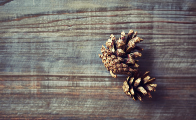 Golden painted pine cones