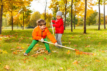 Boy and girl with two rakes working cleaning grass