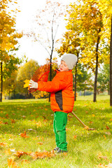 Boy cleans rake from leaf in beautiful autumn park