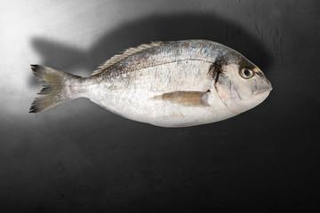 menù pesce vuoto