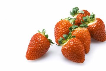 いちご Fragaria Strawberry