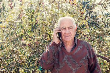farmer at work with olive tree talking on phone