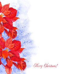 Watercolor background  with poinsettia flowers-01