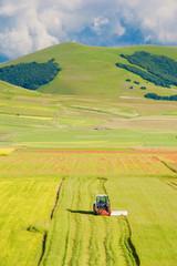 Tractor mowing green field
