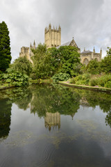 Cathedral reflecting in wells at  Bishop Palace garden, Wells
