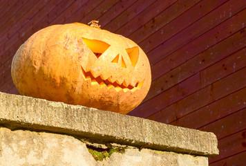 pumpkin0711a