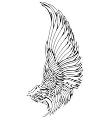 Wing, Illustration