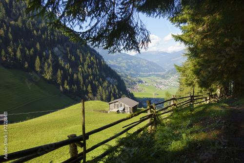 canvas print picture Waldweg mit Blick ins Zillertal