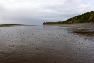 beach with low tide st Audries bay, Somerset